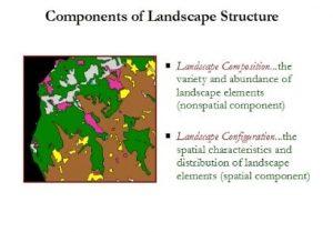 تقسیم بندی متریک های ساختاری